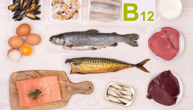 foods containing vitamin B 12