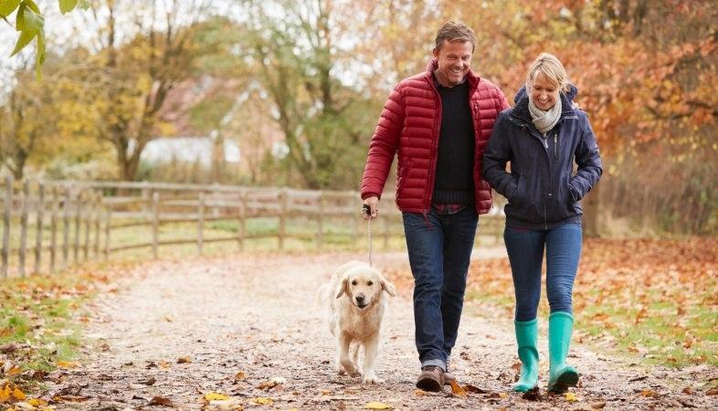 mature couple walking dog