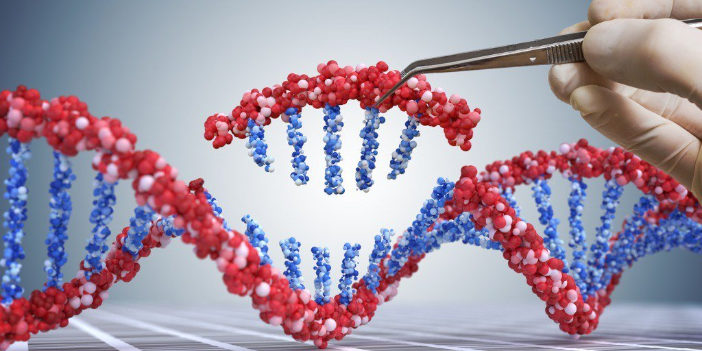 Image of DNA helix.